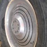 Profile picture of (U13FL738764)